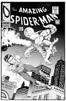 Amazing Spiderman 39 Cover Recreation by TP-NY