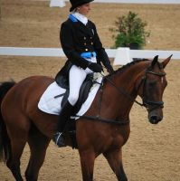 Dressage 25 by equinestudios