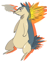 Typhlosion by TSRings