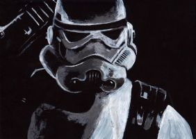 Stormtrooper by gabor5555