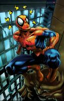 Spider_Sense_by_Bobbett by Lightwolf-of-GOD