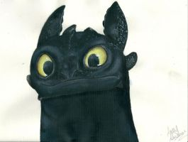 Toothless by AmzyBabes