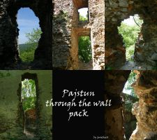 Pajstun Through the wall Pack by Gwathiell