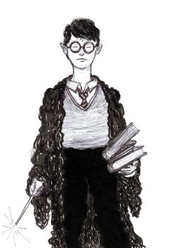 Harry Potter by heidel