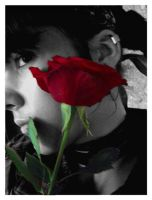 ...:Rose:... by Nailo