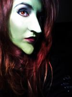 wicked witch of oz by Steflashatic