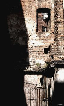 Forgotten spaces II by TeaWithBrownSugar