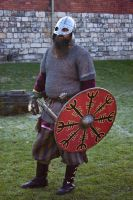 Vikings part deux stock 48 by Random-Acts-Stock