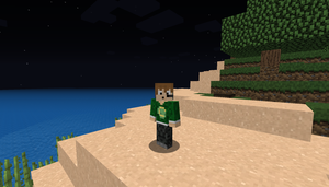 Me In Minecraft by coolperez8