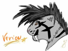 verion by Aaloka
