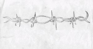 Barbed Wire by JaciBlair