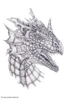 Dragon Head Drawing by ArkaEdri