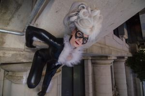 Black Cat - Caught by Kyatto
