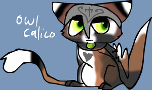 Another Owl Calico by Moracalle