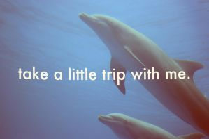 take a little trip with me by RobbyP