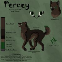 Percy Ref by GonzalezWolf