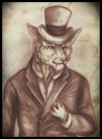 Gentleman Cat by Cam1ra
