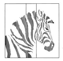 Zebra by Coulterish
