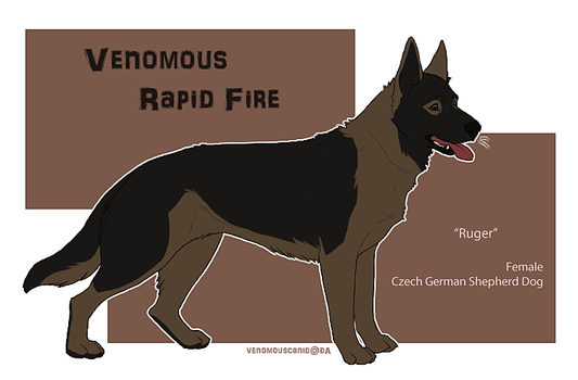 Ruger / Venomous Rapid Fire by ruthlessH4V0C