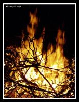 Spirits Of The Fire by BreeSpawn