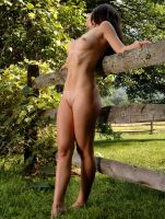 Lisa at a fence by fineartimages