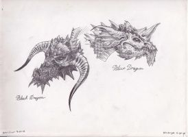 Dragons 1 by RosalineElric
