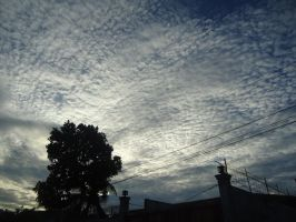 Sky of cotton 4. by tedts