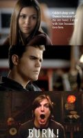 Funny Vampire Diaries Meme by Shadowhunter97