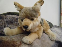 Uni-Toys Jackal Plush by ShadoweonCollections
