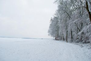 Snowscape Stock 79 by Sed-rah-Stock
