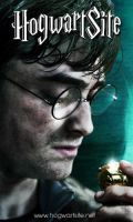 Harry Potter kiss a Golden Snitch in DH Part 2 by HogwartSite
