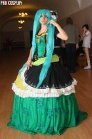 Servant of Evi - Hatsune Miku by YtkaMatilda