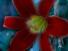 another flower by racing-kites