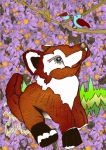 100 Watcher Picture foxy watching by merearthling