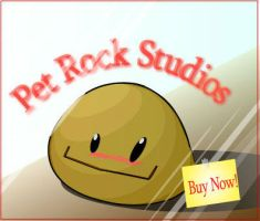 Pet Rock Studios by muteerror