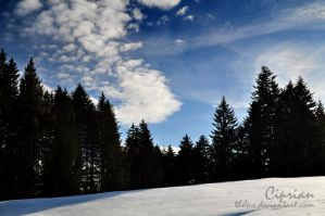 The Blue Winter by the4ce