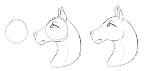 Realistic Horse Face Thing by Amiookamiwolf
