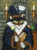 Merlin The Magician by tigerpixieart
