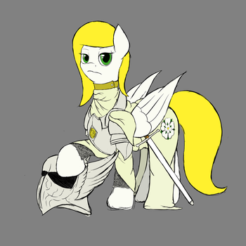 The Paladin by SneoPony