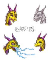 Faces of Ampus - Request by Kurtassclear