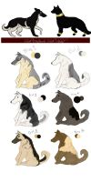 Editon Shepherd puppies OPEN by South-Sidee