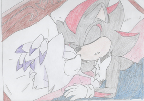 Shadow X Blaze: Coloured by Anonymous-Drawer