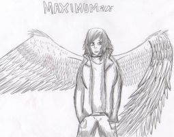 Maximum Ride by thefelinearmy