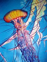 Jellyfish by MirandaPen