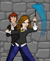 Hermione Protects Ron by jmascia