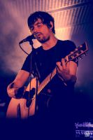 The Pineapple Thief 05 by sylvaincollet