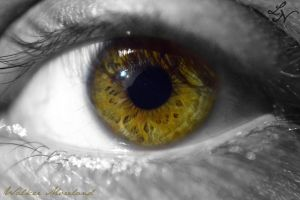 Eye Project: Spotted by ShineeDragon