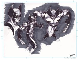 Wolverine Warm-up Sketches by stourangeau