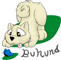 Buhund design by TheCheeseCannibal