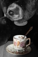 Tea party by CarianneCouture